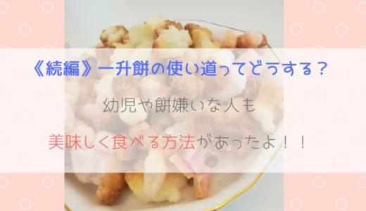 《続編》一升餅の使い道ってどうする?幼児や餅嫌いな人も美味しく食べる方法があったよ!!